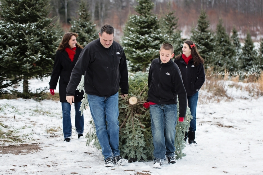 Cut your family tree at Grace Farms