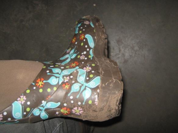 Boots Nouveau