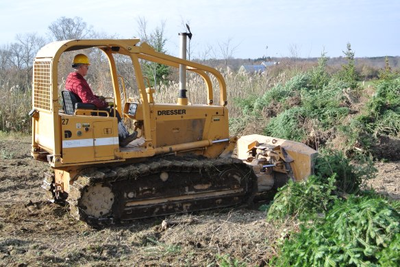 Land Clearing for spring 2014 planting